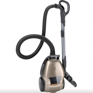 Vacuum cleaners with dust bags